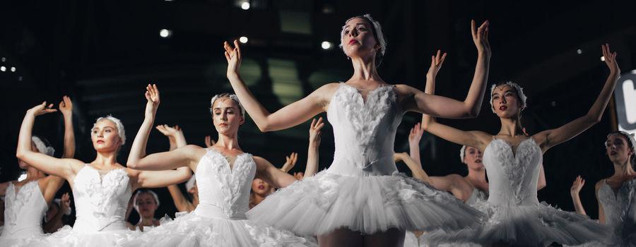 Billede til Opera- & balletrejser