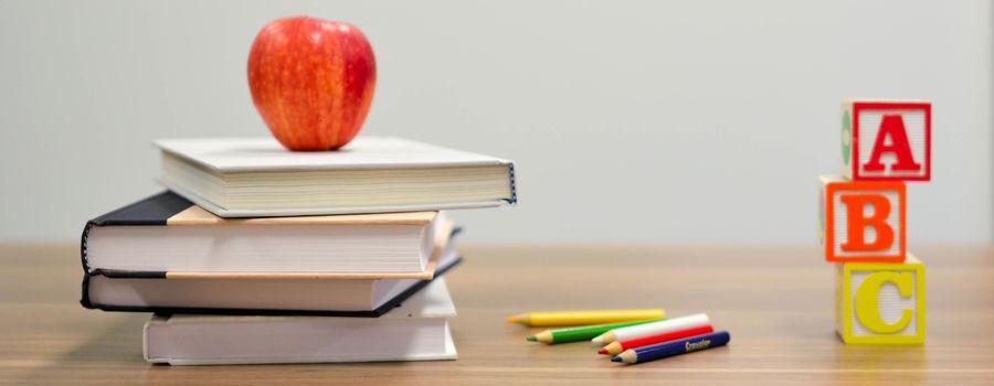 Billede til Studierejser og studieture